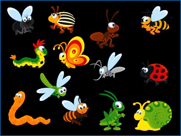 лето насекомые картинки подарок