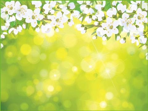 цветйщий май, шаблон 1