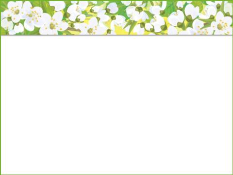 цветйщий май, шаблон 3