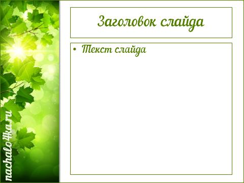 кленовые листья и небо 3