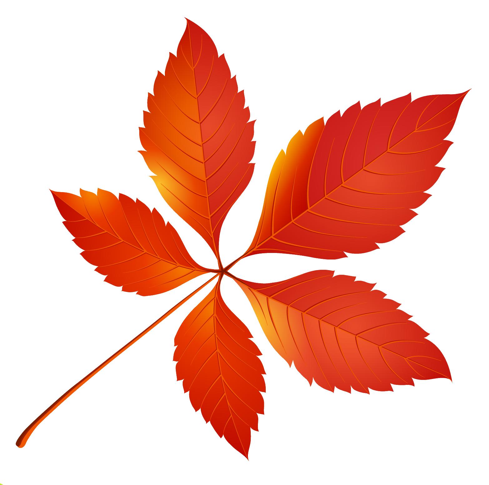 желтые листья клипарт: