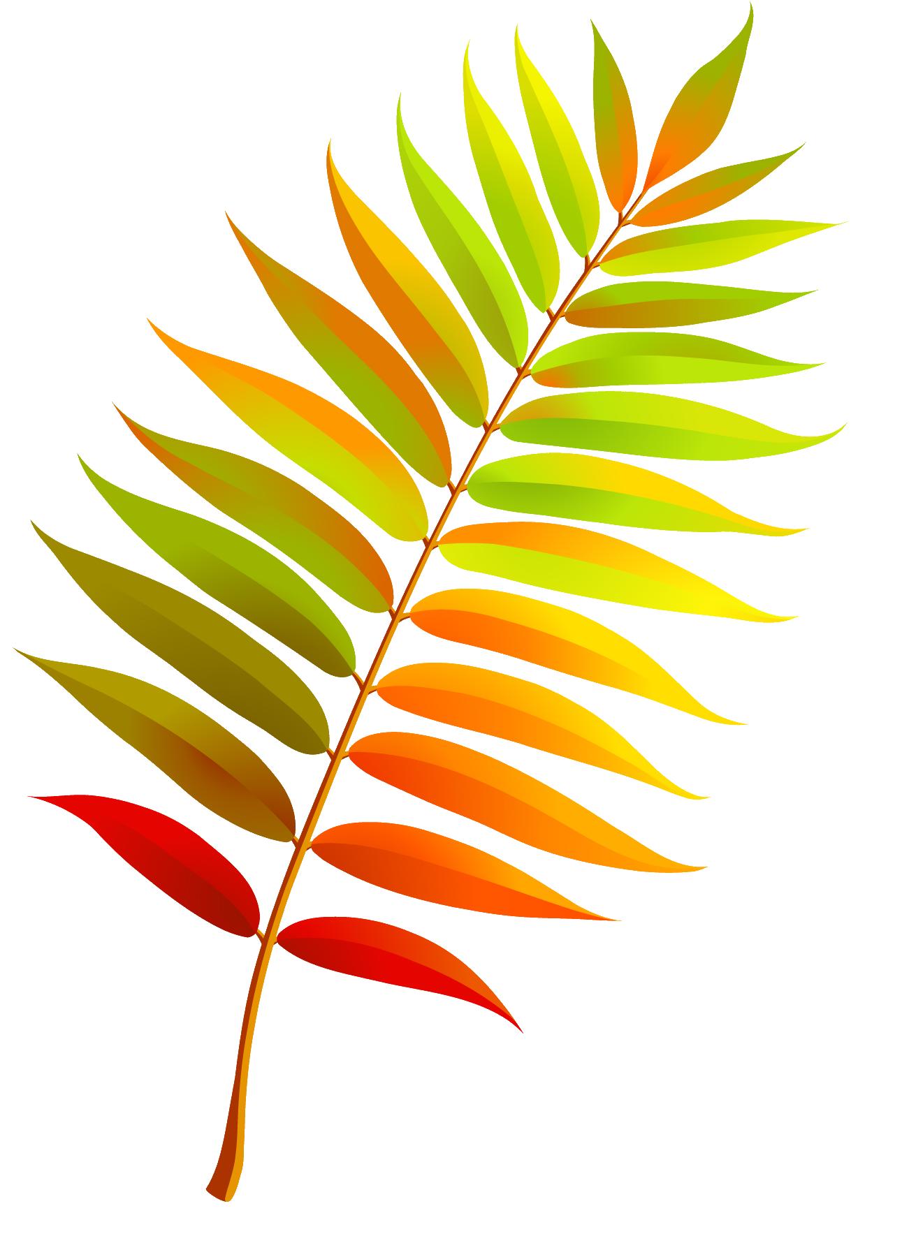 листья рябины 1