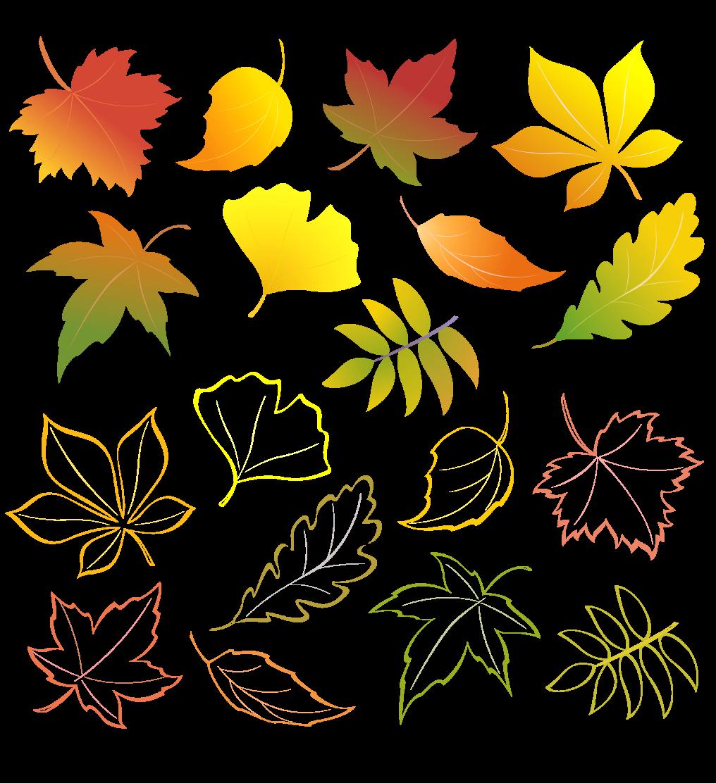 осенние-листья-превью