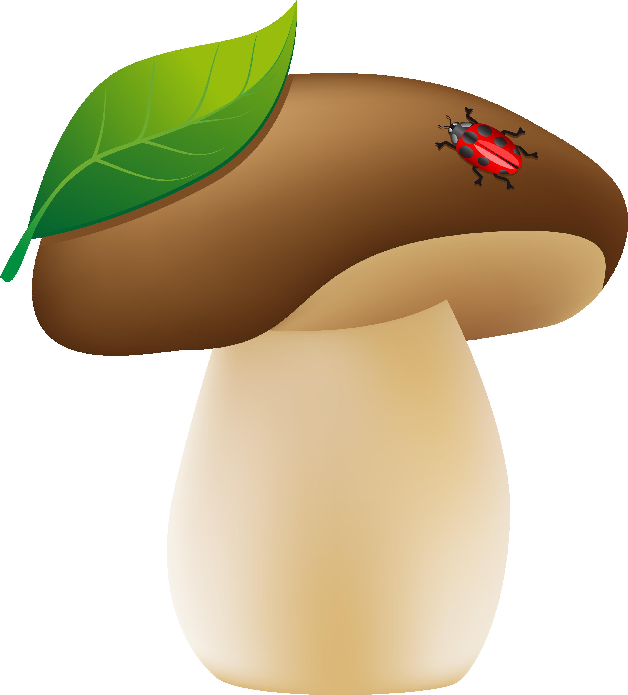картинки грибок для детского сада