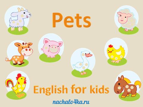 Домашние животные. Английский для детей 1