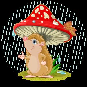 ежик-мухомор-дождик