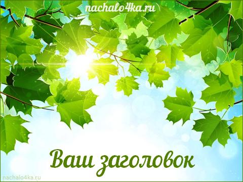 Кленовые листья и небо