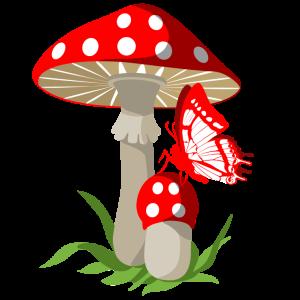 мухомор-и-бабочка