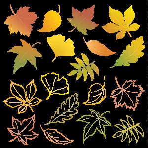 осенние-листья-2