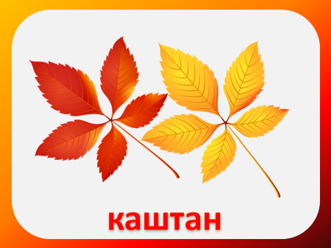 осенние листья презентация 2