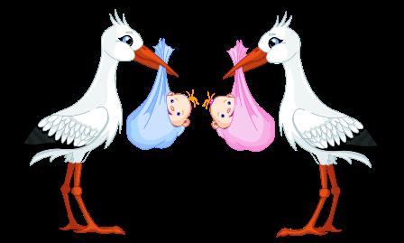 Аисты с малышами