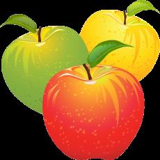 три яблока зеленое желтое красное
