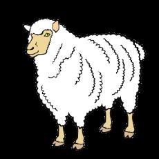 овечка