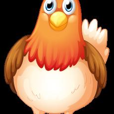 курица 6