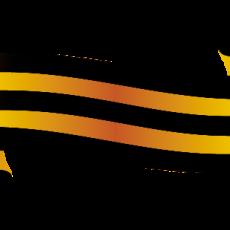army (6)
