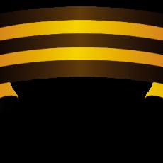 army (7)