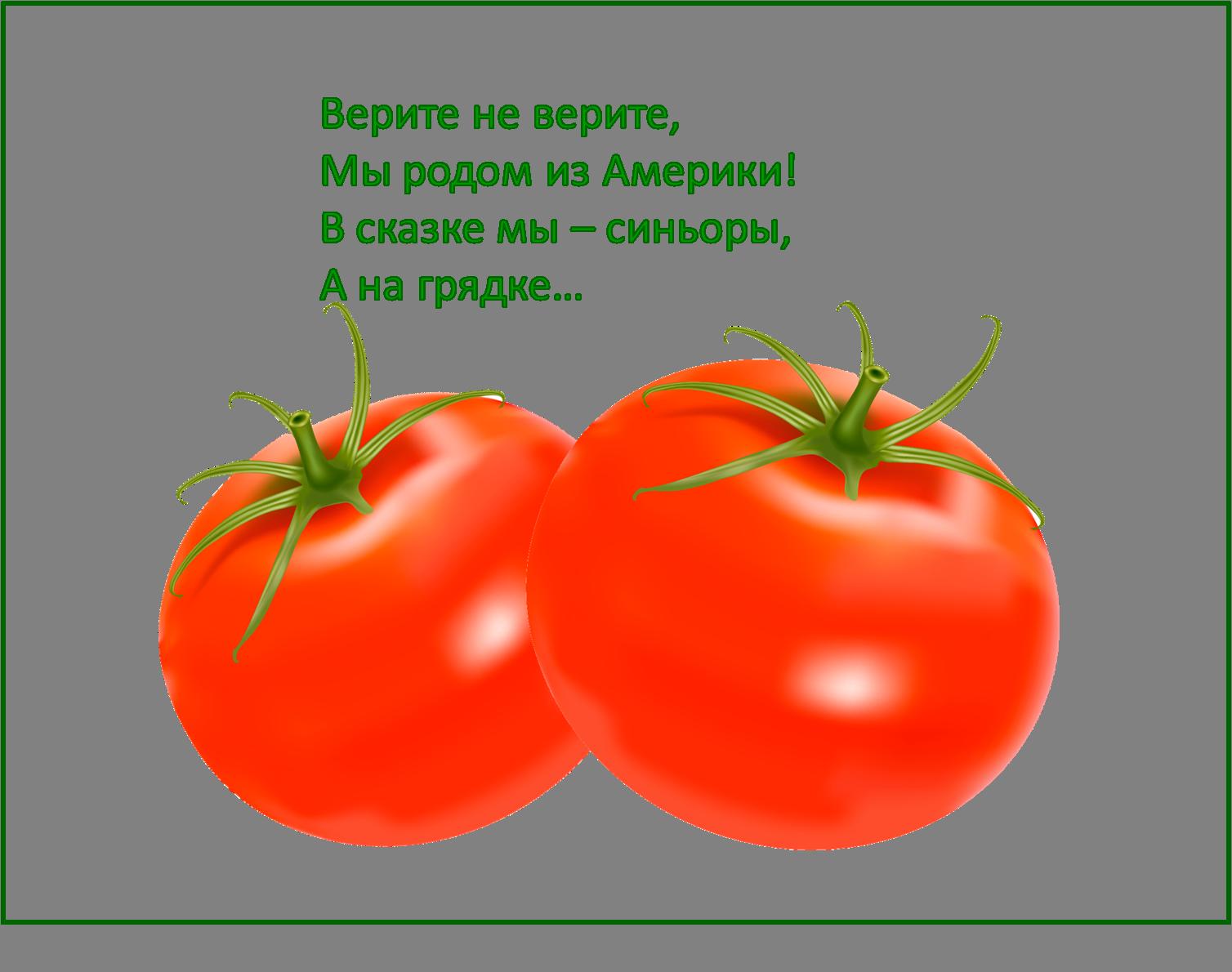 шикарное картинки про овощи с загадками двор