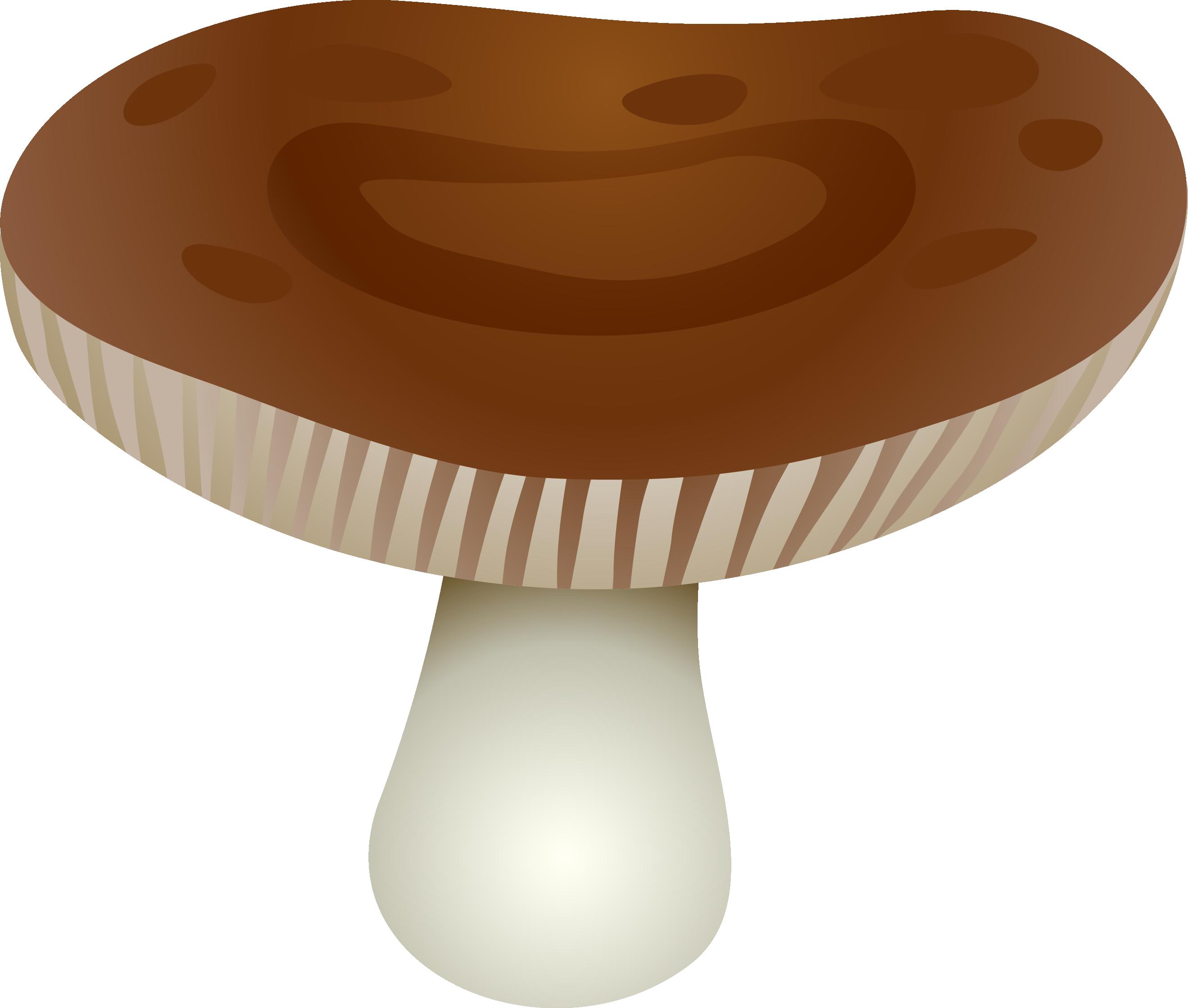 пять картинка шляпка гриба на прозрачном фоне должны быть