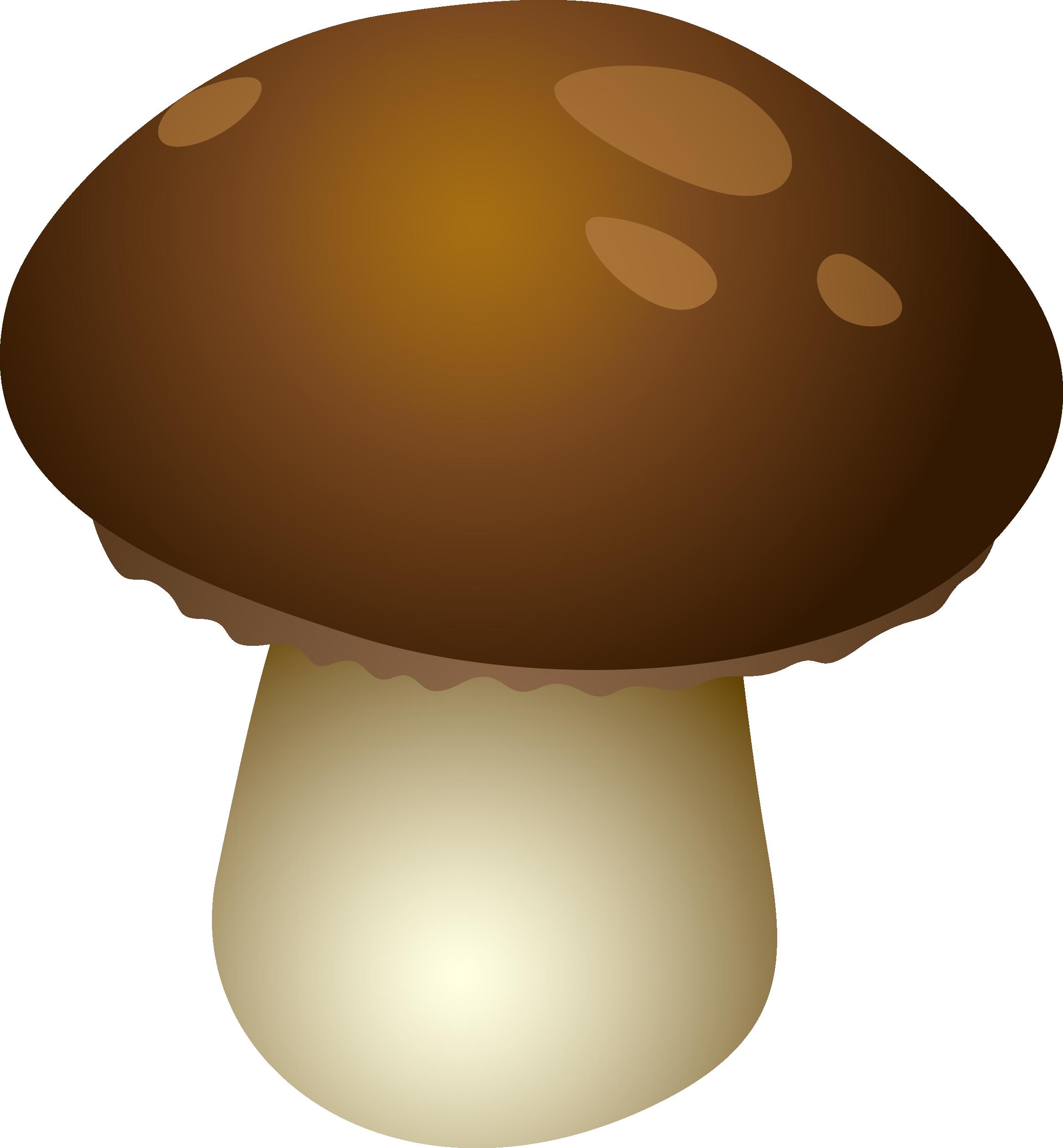 маленький грибочек картинка бройлеры