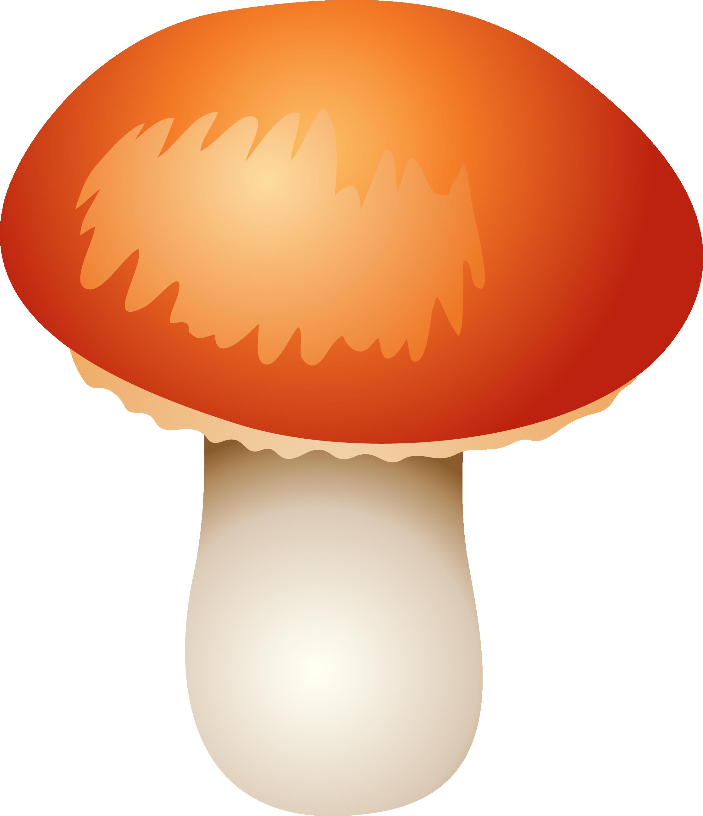 картинка шляпка гриба на прозрачном фоне производство